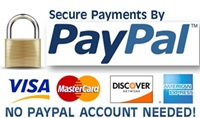 paypal-payment-2
